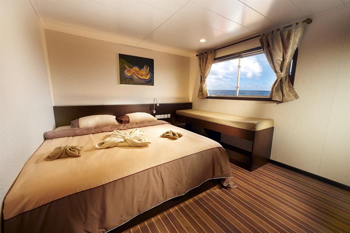 Blue Manta Liveaboard Upper Deck Cabin
