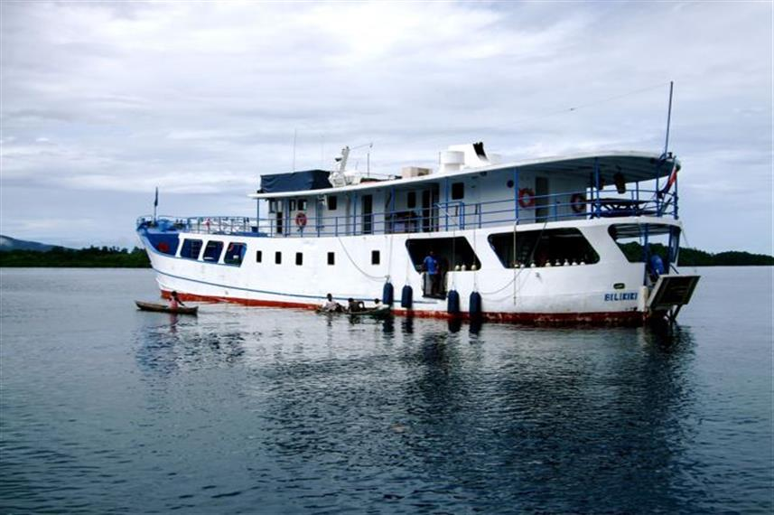 Bilikiki Liveaboard Solomon Islands diving