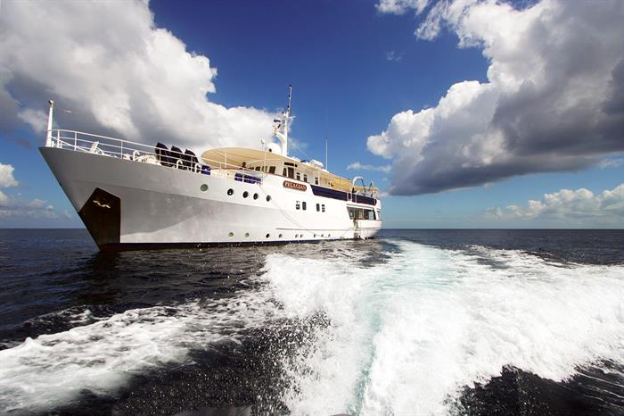 With 10 guests max Pelagian provides an intimate liveaboard experience.