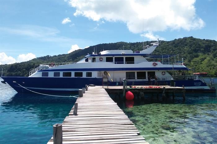 Dive Specials PNG