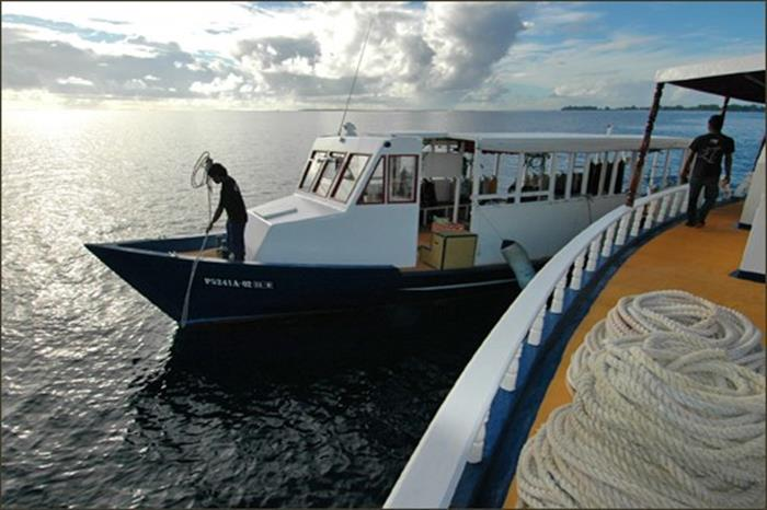 M/V Sea Spirit Diving Dhoni