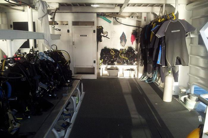 Gear up station, showers & wetsuit storage.