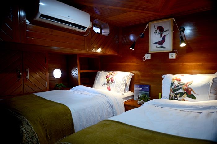 Twin Cabin - Lady Denok Indonesia