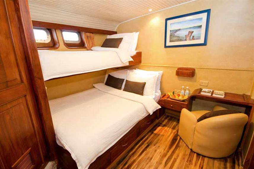 Lower deck twin cabin - Galaven Galapagos