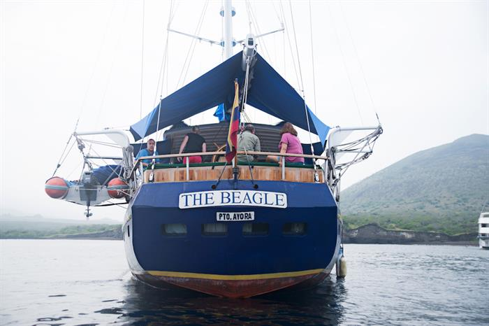 The Beagle Galapagos
