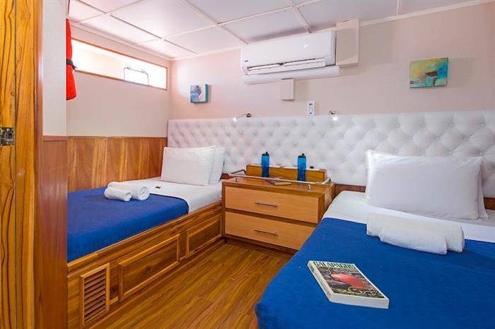 Lower Deck Twin Cabin - Tip Top III