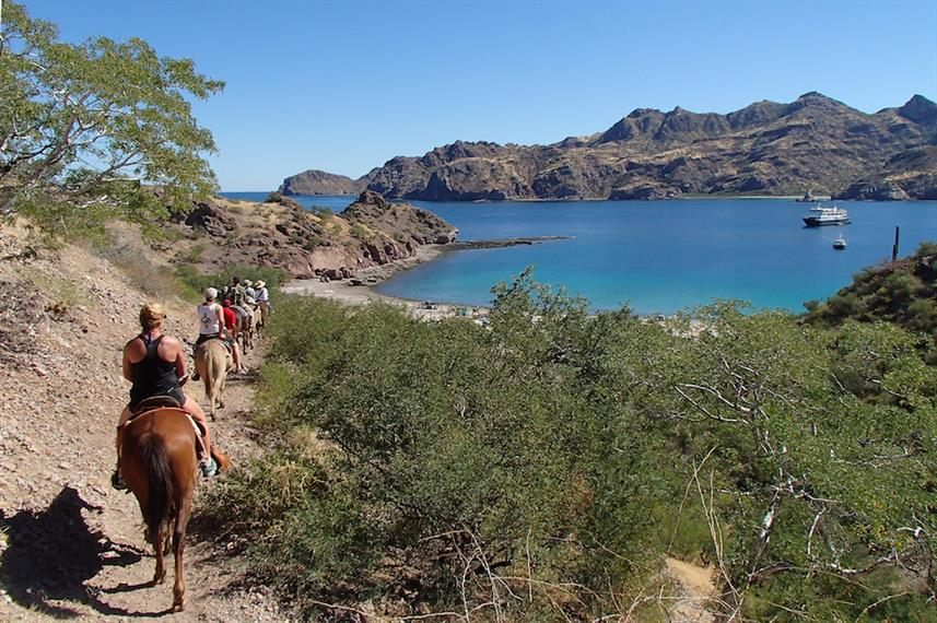 Burro ride in Baja with Safari Endeavour