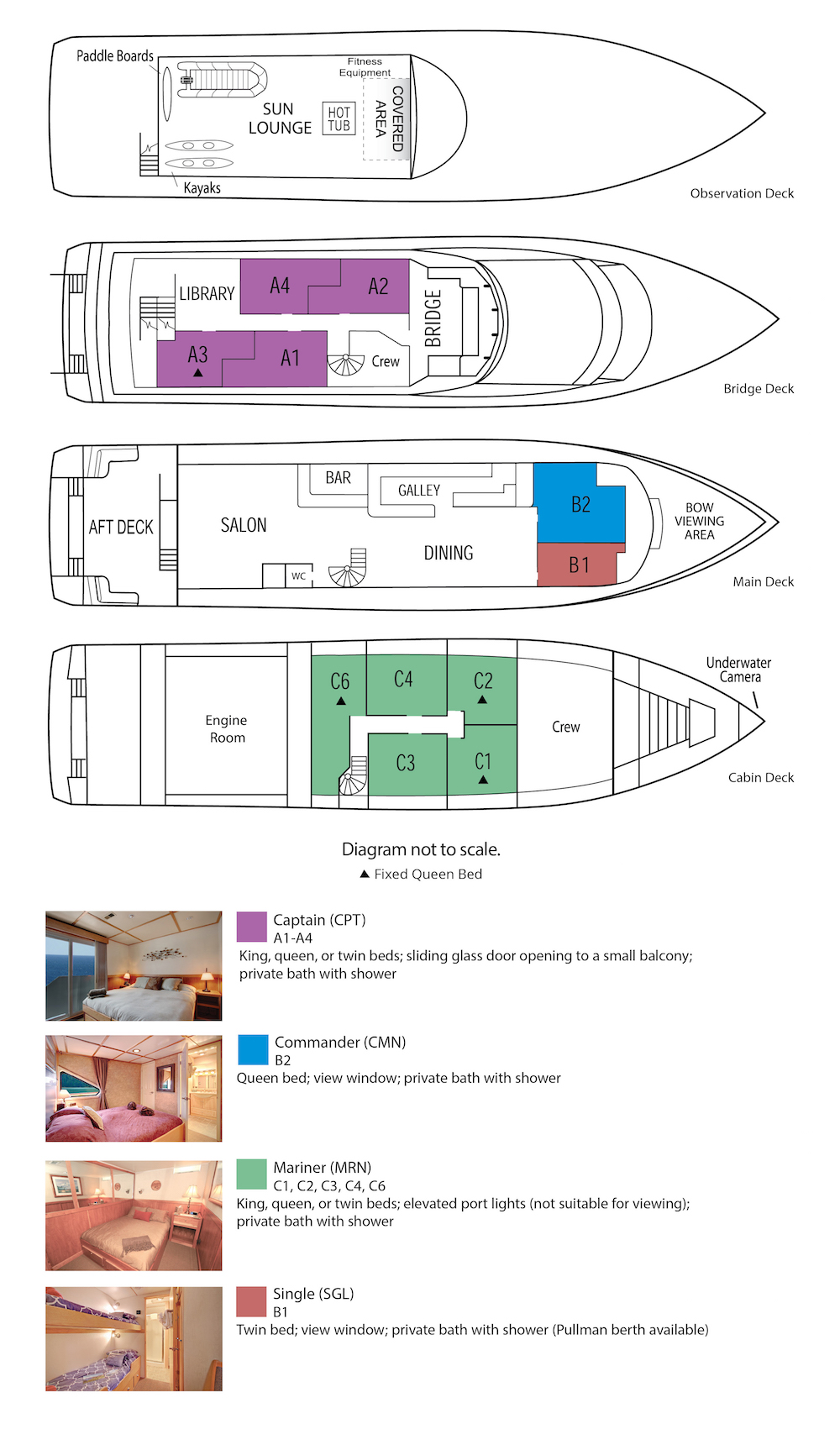 Safari Quest Deck Plan floorplan