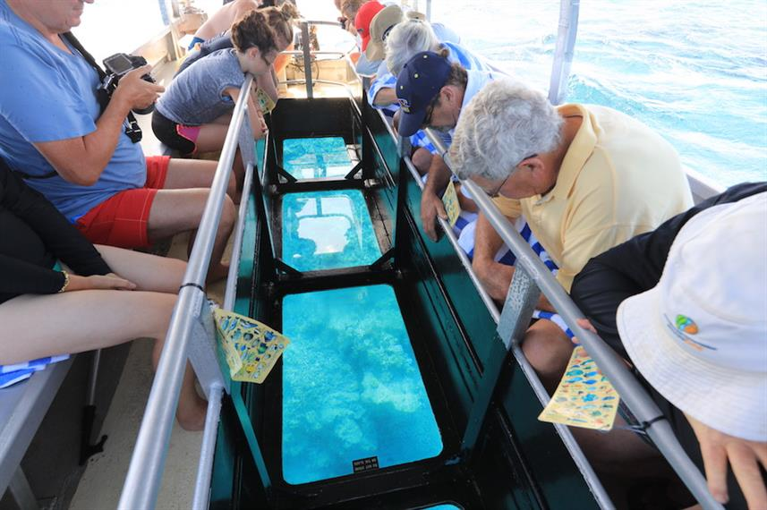 Glass Bottom Boat Excursion - Stateroom - Coral Expeditions II