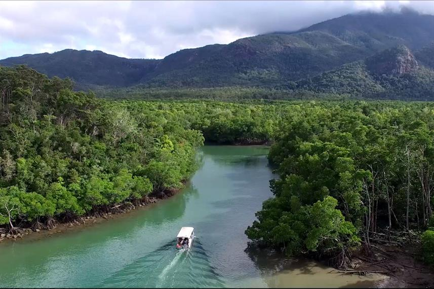 Rainforest Tour - Coral Expeditions II