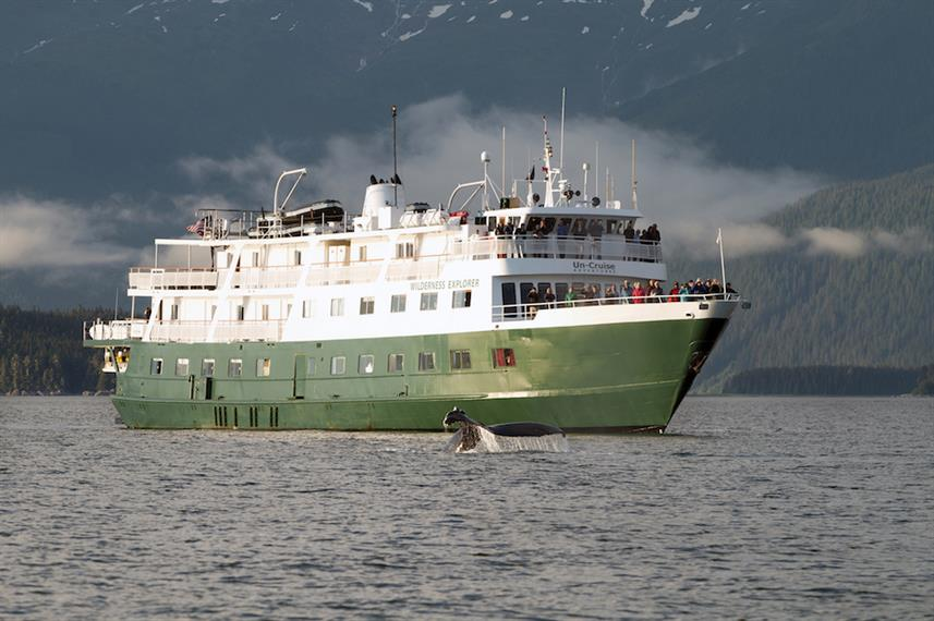 Whale Watching with Wilderness Explorer Alaska