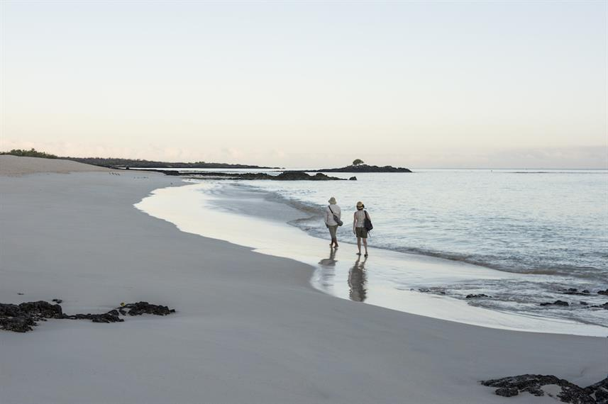 Beach walks in the Galapagos