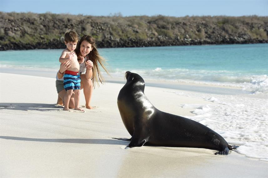 Family time with Sea Lions Galapagos