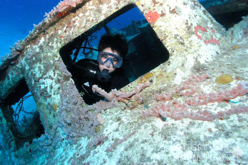 #diving - Roatan Aggressor
