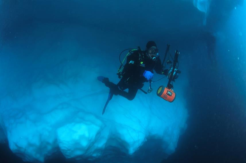 Diving in the Arctic