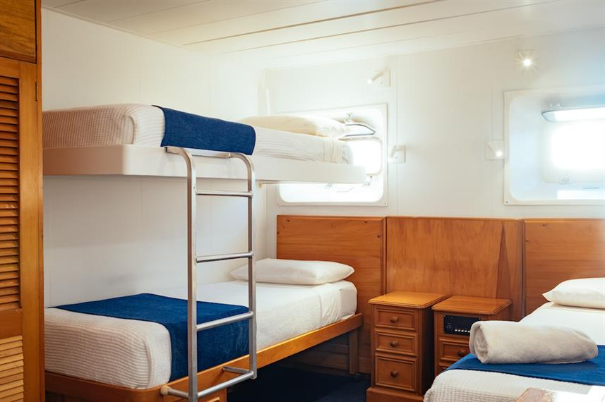 Bunk Cabin - Reef Endeavour
