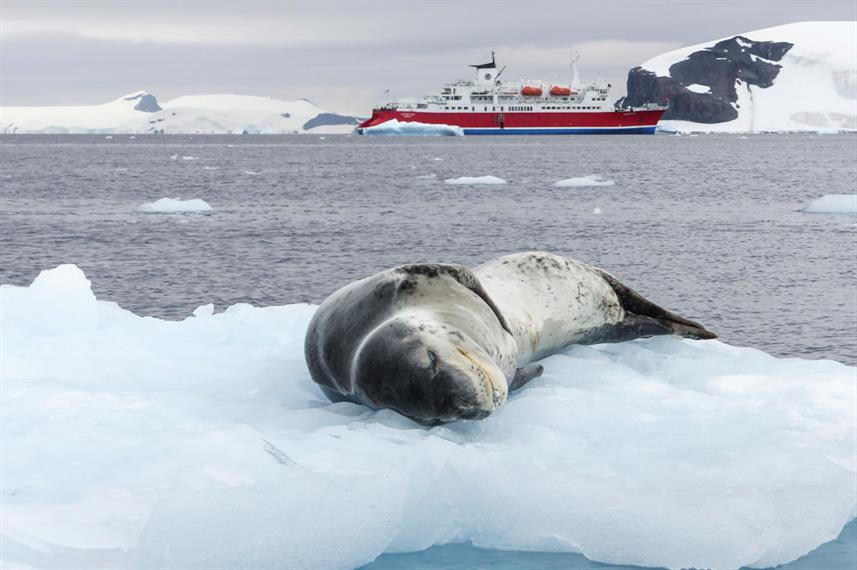 Antarctica Sea Leopard Ice MS Expedetion