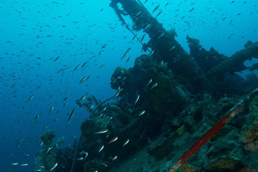 solomon islands wreck of the anne