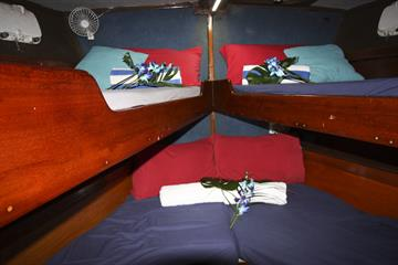 Shared Bunk Cabin