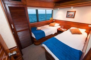 Dolphin deck Cabins