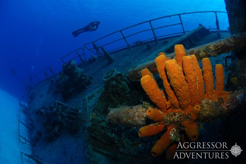 #diving - Cayman Aggressor V