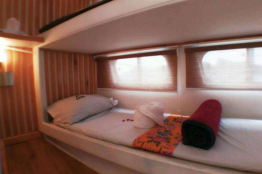Standard Bunk Cabin - Sea World 1