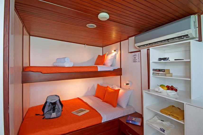Upper Deck Cabin - Pinguino Explorer