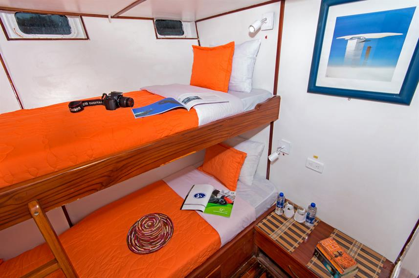 Lower Deck Cabin - Pinguino Explorer