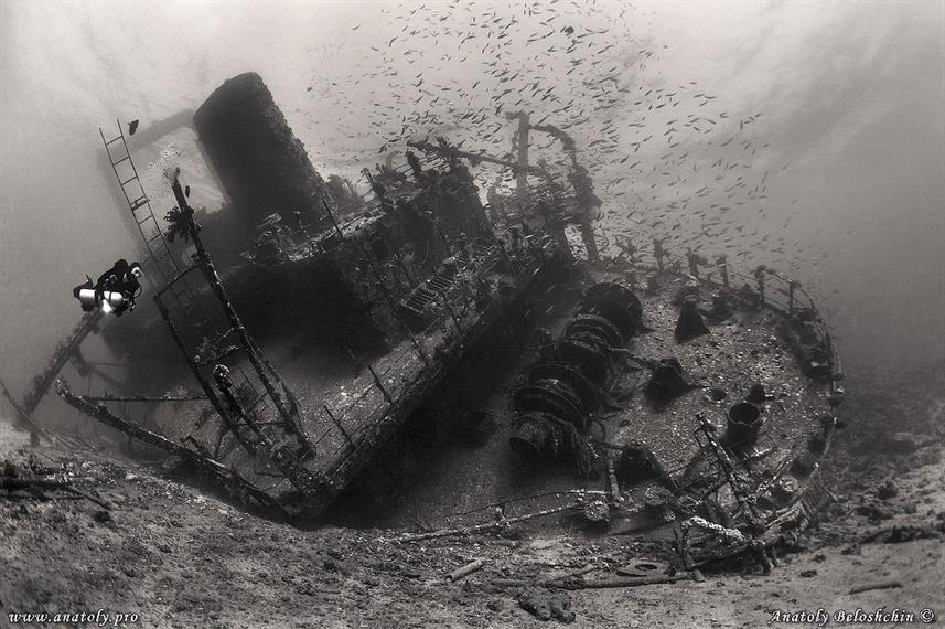 Wreck Dive - Egypt