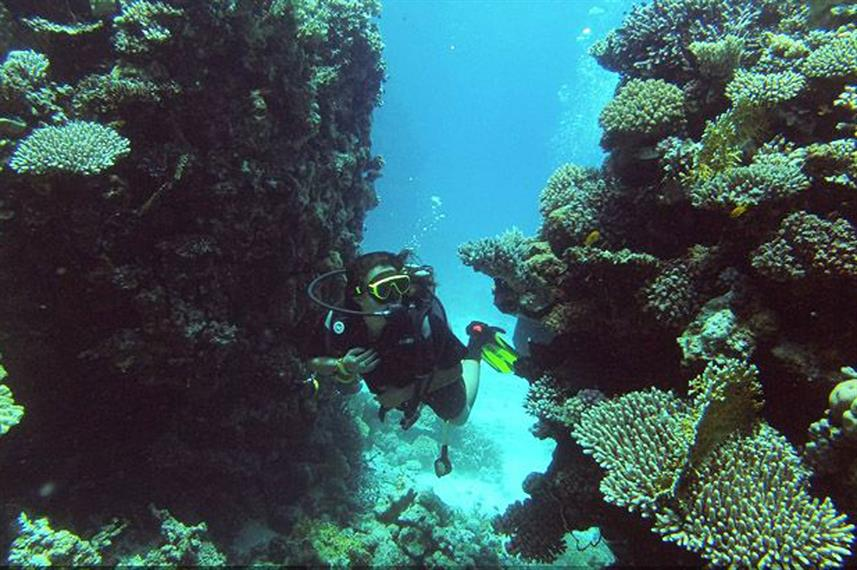 #diving - Dive Hurghada